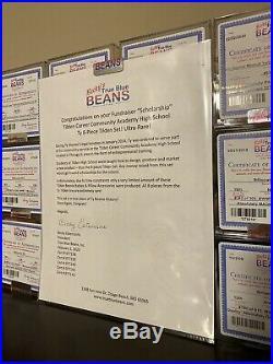 Authenticated Ty Beanie Baby Tilden 8 Piece Set Extremely Rare Mwmt- Mq! W@w