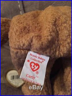 Curly TY Beanie Baby RARE ERRORS 1996/1993 Retired