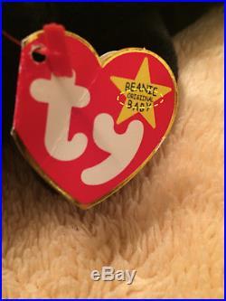 RARE BLACKIE the BEAR Ty Beanie Baby 7-Tag Error Origiinal Suface 1993 /1994 PVC