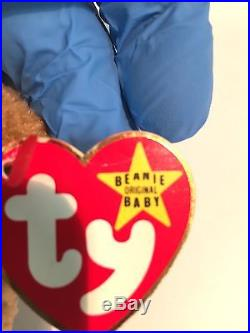 RARE Curly the Bear Ty Beanie Baby With Rare Errors