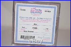 RARE Dino Trio Rex, Bronty, Steg TY Beanie Babies 3rd/1st AUTHENTICATED