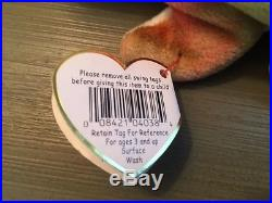 Rare First Generation Iggy Beanie Baby With Errors And Pvc Pellets