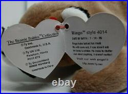 Rare Mint Ty Ringo With PVC Pellets And Tag Errors