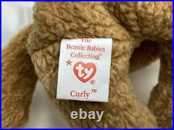 Rare Retired Ty Beanie Baby Curly The Bear 1993 1996 Bear With Numerous Errors