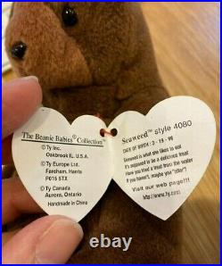 Seaweed The Otter Beanie Baby Retired TY RARE Tag Errors And Features