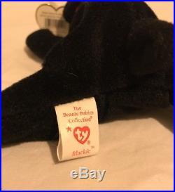 TY BEANIE BABY BLACKIE the BEAR RARE Tag Errors