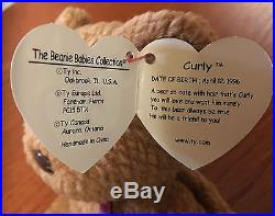 Ty Beanie Baby Curly Bear Retired With Tag Errors Very Rare