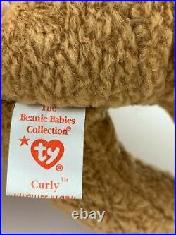 TY Beanie Baby Collection Retired Curly Bear April 12,1996 Rare Lots Of Errors