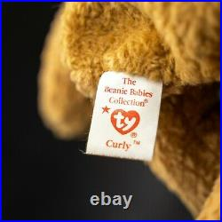 TY CURLY Beanie Baby Rare with multiple Hang tag and tush errors
