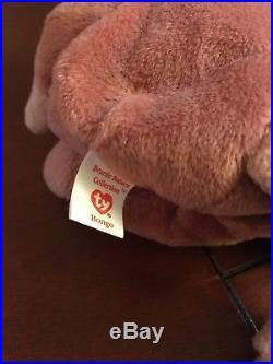 TY VERY RARE Pouch Beanie Baby With BONGO Tush Tag & BONGO without Hang Tag