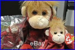Ty Beanie Baby & Buddy & Teenie 1999 Schweetheart Reddish Orangutan Rare Retired