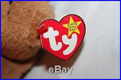 Very Rare TY Beanie Baby Curly the Bear with MANY ERRORS